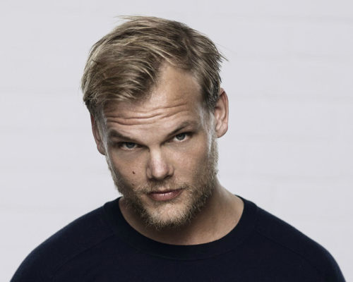 My Best Avicii